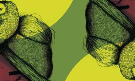 MUSHROOMS PROJECT: DIRTY BOLAS/SUNSET BALLAD, l'antipasto prima della portata principale (il nuovo album)