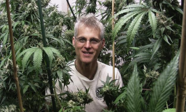 RE:LEGALIZED: Il documentario sulla pianta più utile e più proibita al mondo [intervista a Francesco Bussalai]